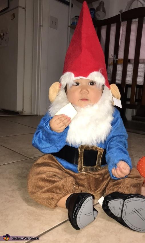 Little Gnome Costume