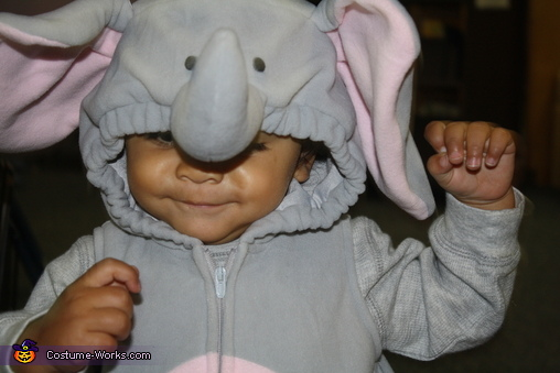 Little Heffalumps Costume