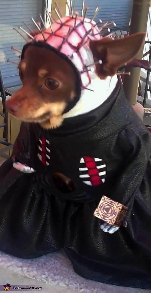 Hellraiser Pinhead Costume