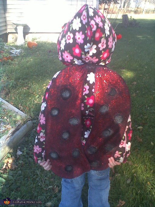 Little Ladybug - Homemade costumes for girls