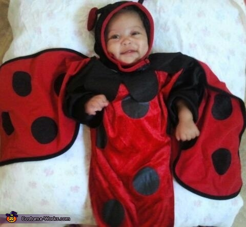 Little Ladybug Baby Costume