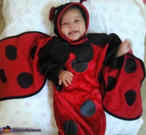 Looking cute, Little Ladybug Baby Costume