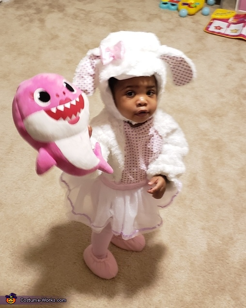Lamb and Shark, What a Duo, Little Lamb Costume