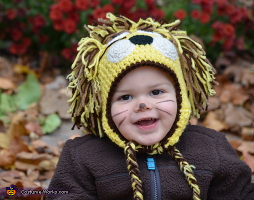 lion closeup, Baby Lion Costume