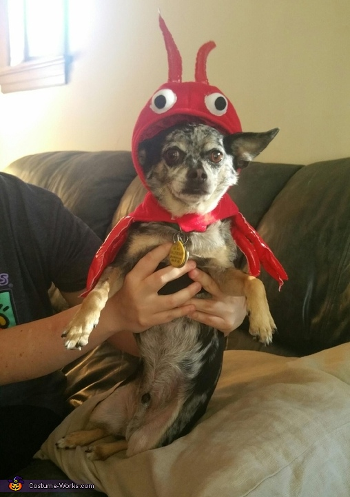 Little Lobster Costume