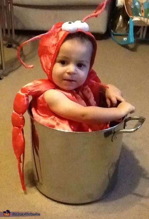 Little Lobster in a Pot Baby Costume
