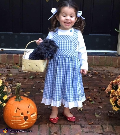 Little Miss Dorothy Costume