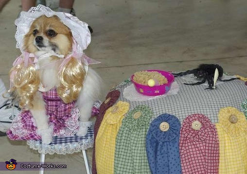 Little Miss Muffet Dog Costume