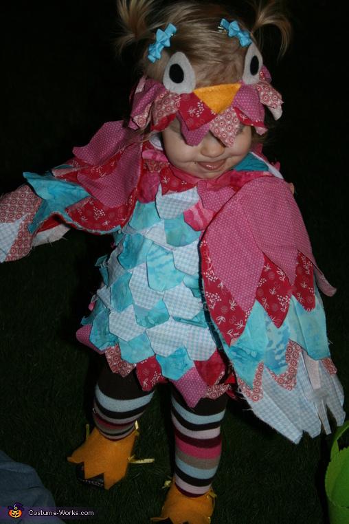Little Miss Owl Costume