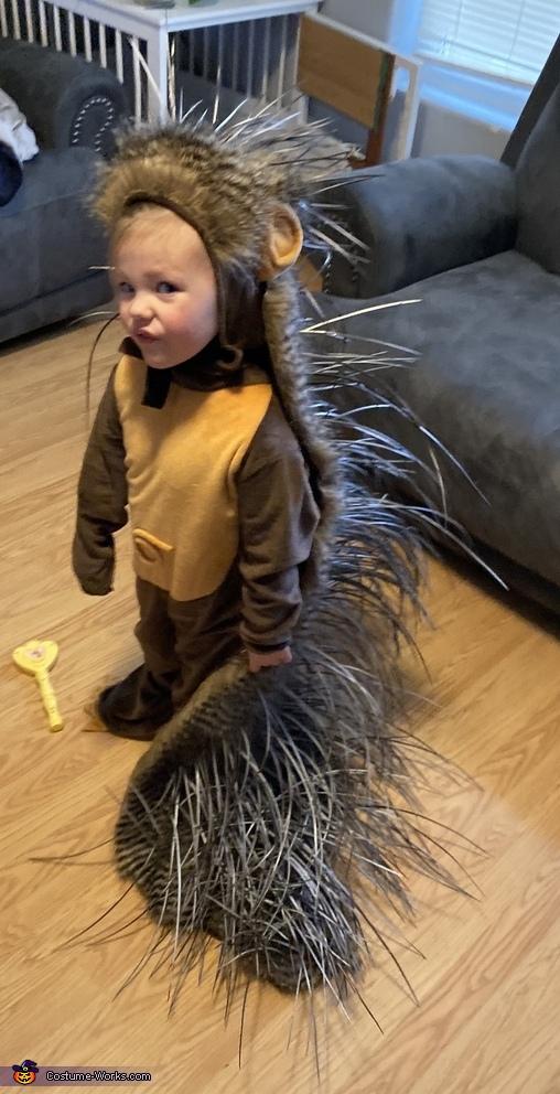Little Miss Porcupine Costume