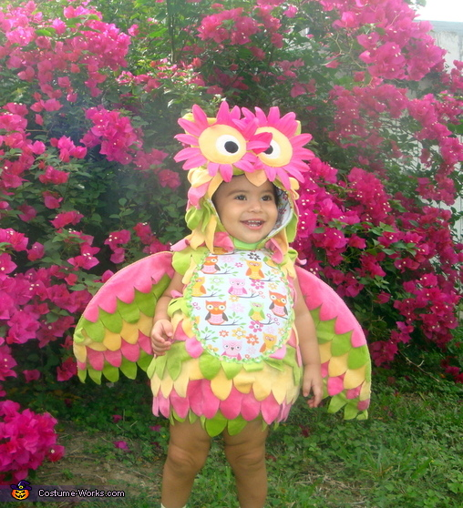Little Owl - Store Bought costumes for babies