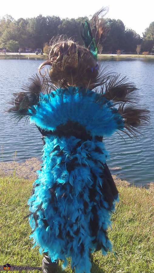 BACK VIEW, Little Peacock Costume