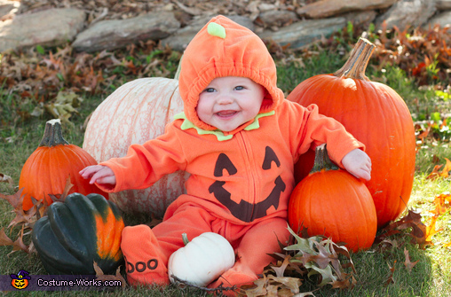 Little Pumpkin & Lion Baby Costume