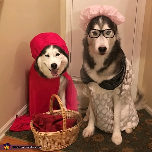 Little Red and Grandma Costume