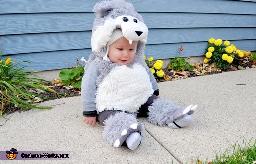 Wolf, Little Red and the Big Bad Wolf Costume