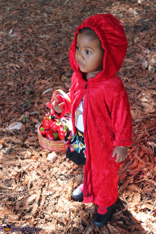 LIttle Red Ridding Hood, Little Red Ridding Hood Costume