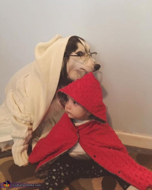 Little red and big bad wolf 2, Little Red Riding Hood Costume