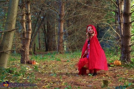 Once upon a time..., Little Red Riding Hood and the Bad Wolf Costume