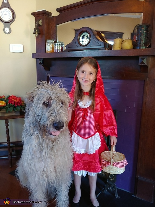Little Red Riding Hood and The Big Bad Wolf Homemade Costume