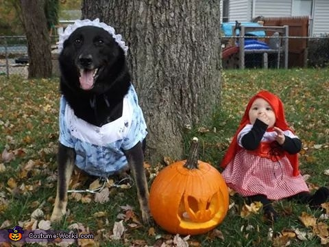 Little Red Riding Hood and the Big Bad Wolf Baby Girl and Dog Costume
