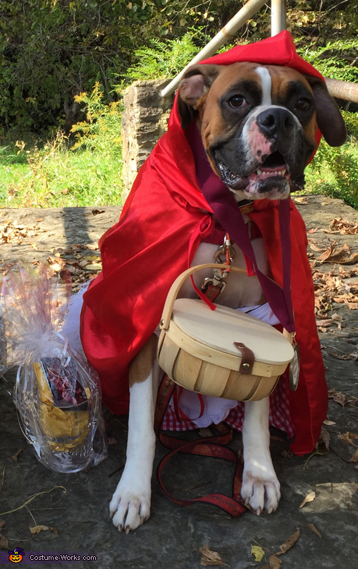 Little red riding hood, Little Red Riding Hood, Grandma and Big Bad Woof Costume