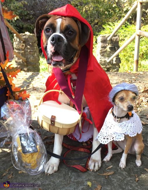 Little red riding hood and grandmal, Little Red Riding Hood, Grandma and Big Bad Woof Costume