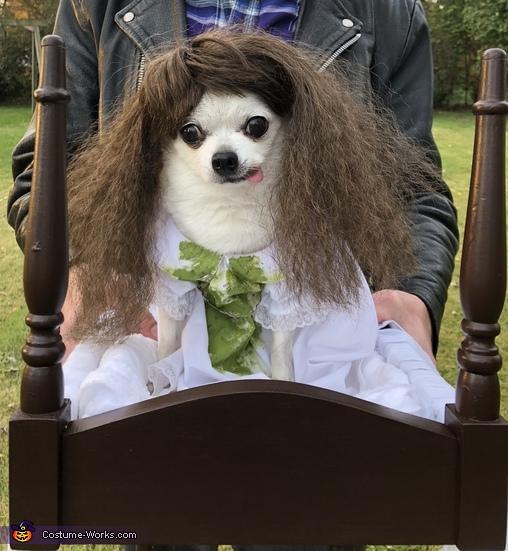 Possessed Pooch, Little Regan (The Exorcist) Costume