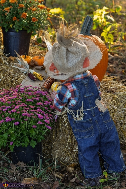 Little Scarecrow Homemade Costume