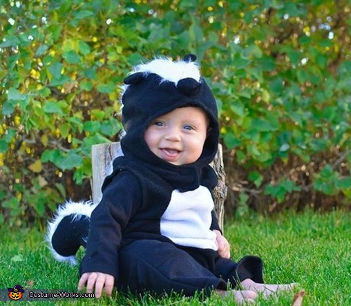 Daily Dose of Cute Watch Baby Skunk Delight in Chasing