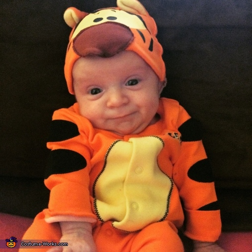 Little Tigger Costume