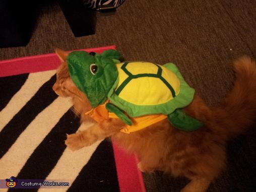 Little Turtle Costume