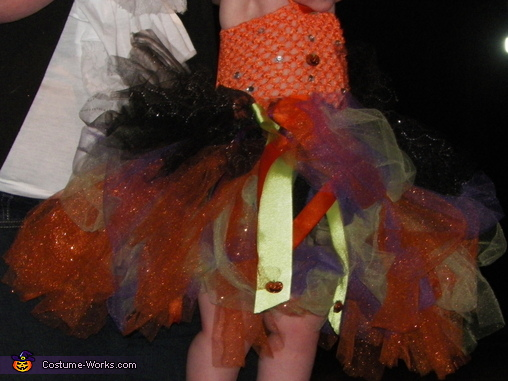 Close Up on Dress , Little Witch Baby Costume