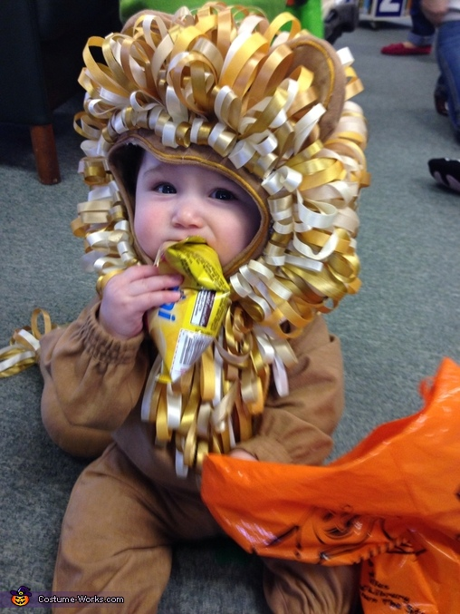 Littlest Lion Baby Costume