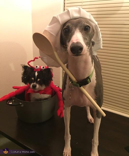 Lobster Dinner Costume