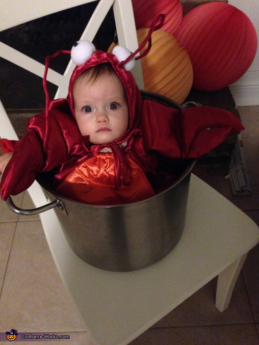 Lobster in a Pot, Lobster in a Pot Baby Costume