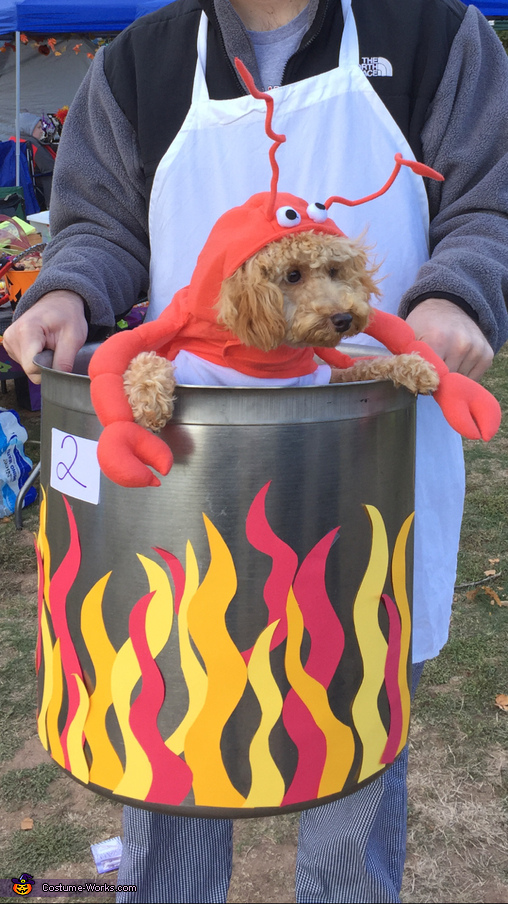 Lobster in a Pot Costume