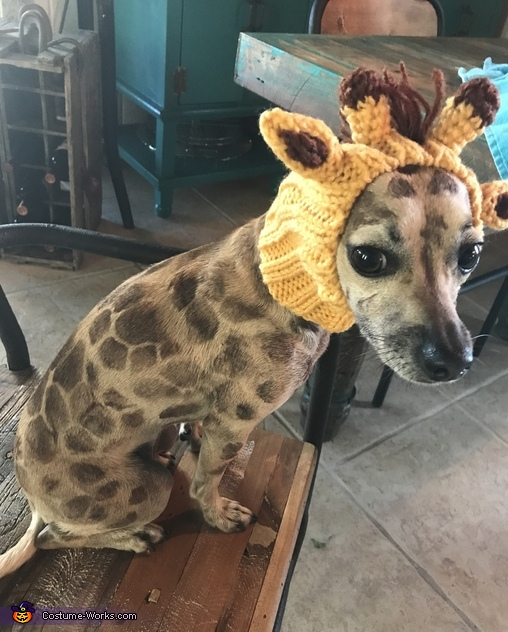 Lola the Giraffe Costume