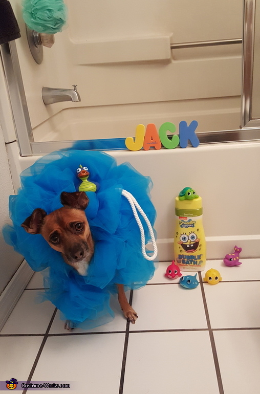 Jack the Loofah Pet Costume