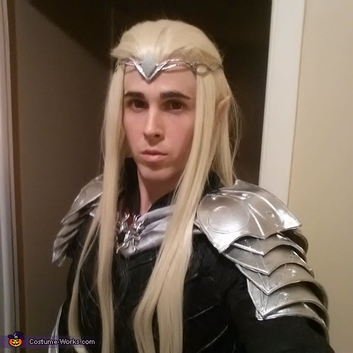 Ears, wig, and all!, Lord Thranduil, King of the Woodland Realm Costume