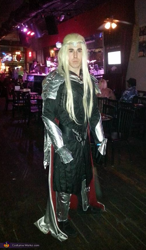 Lord Thranduil, King of the Woodland Realm Costume