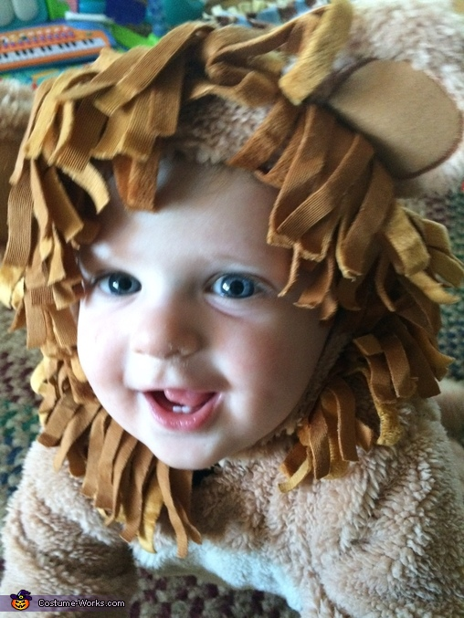 Little lion, Lovable Lion Costume