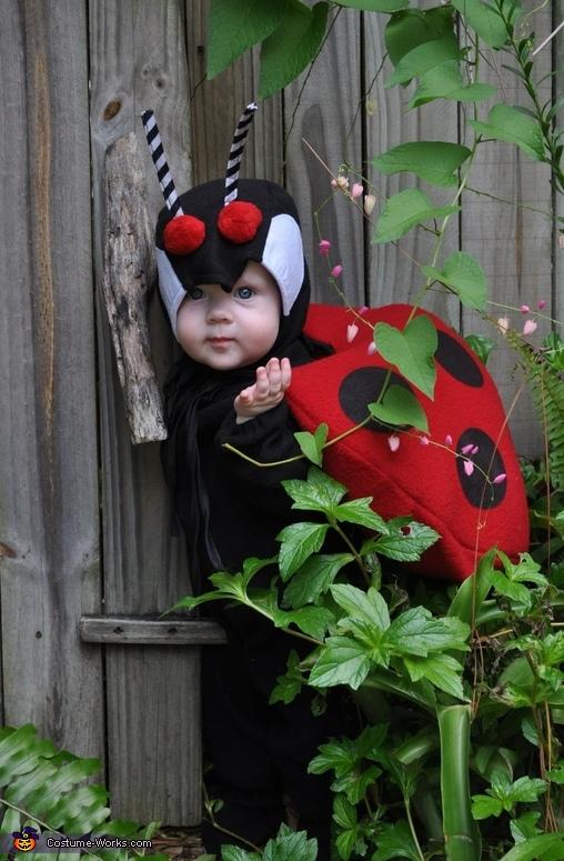 Baby Ladybug Costume