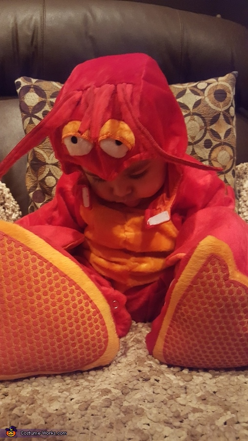 Lobster Baby Costume DIY