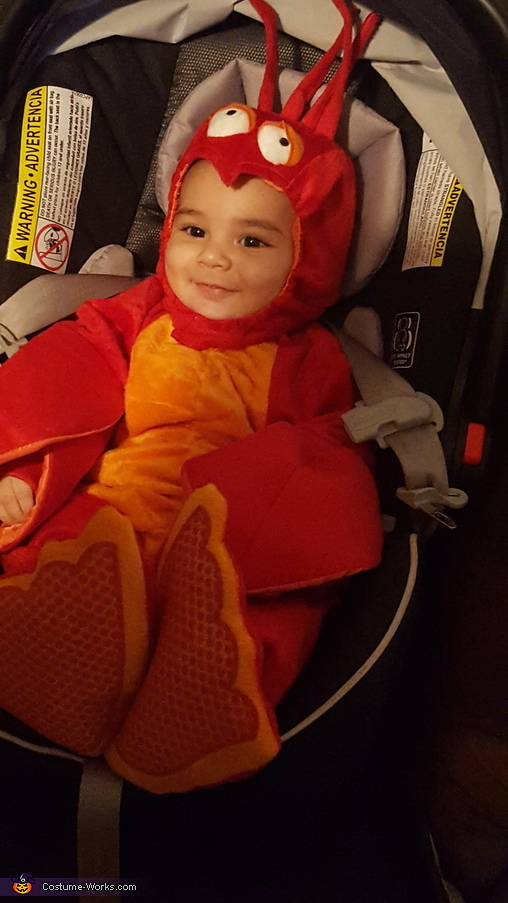 Lobster Baby Costume DIY