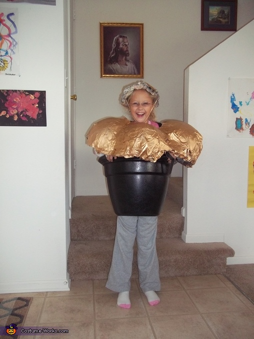 Pot of Gold, Lucky Charms Costume