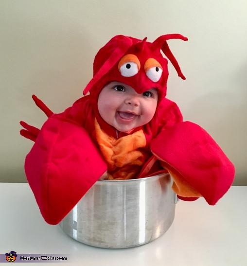 Luella the Lobster Costume