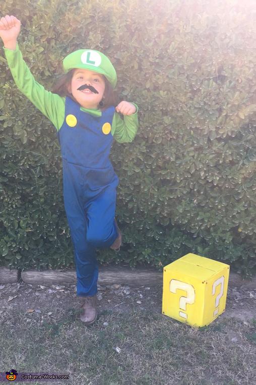 Luigi Costume