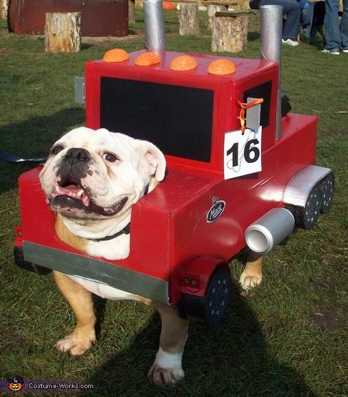 Mack Truck Bulldog Costume