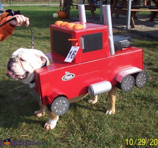 Tucker Mack Truck #2, Mack Truck Bulldog Costume