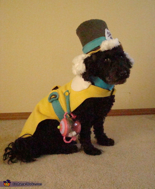 Mad Hatter and Cheshire Cat Costumes for Pets